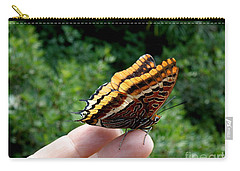 Carry-all Pouch featuring the photograph Two Tailed Pasha by Lainie Wrightson