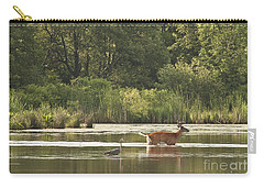 Carry-all Pouch featuring the photograph Unusual Pair  by Jeannette Hunt