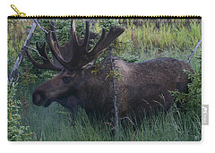 Carry-all Pouch featuring the photograph Velvet by Doug Lloyd