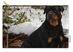 Waiting Carry-all Pouch by Karen Harrison