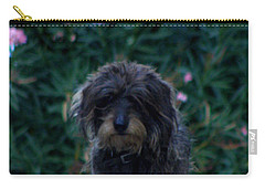 Carry-all Pouch featuring the photograph Waiting by Lainie Wrightson