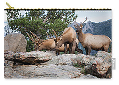 Wapiti Carry-all Pouch by Ronald Lutz