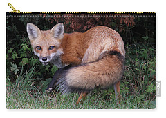 Wary Fox Carry-all Pouch