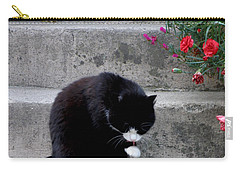 Carry-all Pouch featuring the photograph Washing Up by Lainie Wrightson