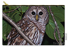 Who Are You 2 Carry-all Pouch by Cheryl Baxter