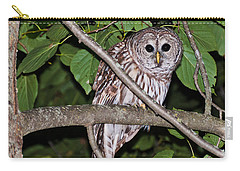 Who Are You Looking At Carry-all Pouch by Cheryl Baxter