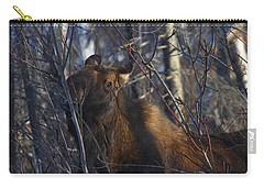 Carry-all Pouch featuring the photograph Winter Food by Doug Lloyd