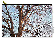 Winter Sunlight On Tree  Carry-all Pouch by Chalet Roome-Rigdon
