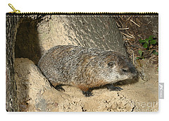 Woodchuck Carry-all Pouch by Ted Kinsman
