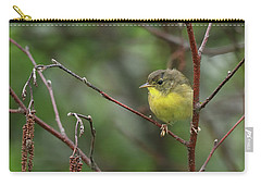 Yellowthroated Warbler Carry-all Pouch
