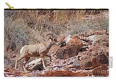 Escalante Canyon Desert Bighorn Sheep  Carry-all Pouch