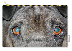 Gandalfs Eyes Carry-all Pouch