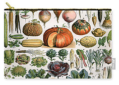 Illustration Of Vegetable Varieties Carry-all Pouch by Alillot