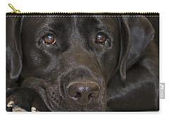 Labrador Retriever A1b Carry-all Pouch