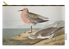 Red-breasted Sandpiper  Carry-all Pouch by John James Audubon