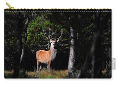 Carry-all Pouch featuring the photograph  Stag In The Forest by Gavin Macrae