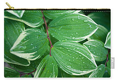Tears Of Solomons Carry-all Pouch