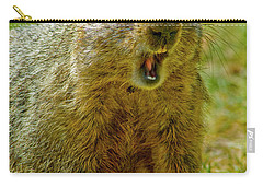 A Hungry Fellow  Carry-all Pouch by Paul W Faust - Impressions of Light