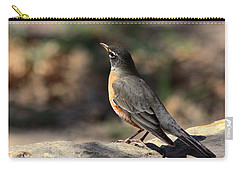 American Robin On Rock Carry-all Pouch by Sheila Brown