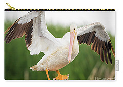 American White Pelican  Carry-all Pouch by Ricky L Jones