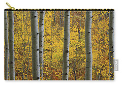 Aspen In Autumn At Mcclure Pass Carry-all Pouch
