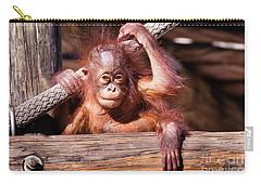Baby Orangutan Carry-all Pouch by Stephanie Hayes
