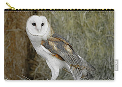 Barn Owl On Hay Carry-all Pouch by Steve McKinzie