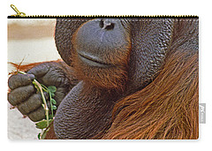 Big Daddy Carry-all Pouch by Michele Burgess