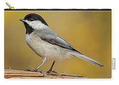Black-capped Chickadee Carry-all Pouch by Jim Moore
