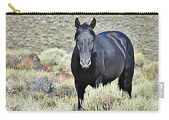 Black Mustang Carry-all Pouch by Marilyn Diaz