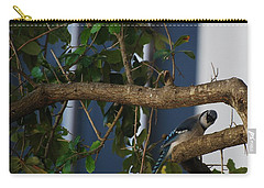 Carry-all Pouch featuring the photograph Blue Bird by Rob Hans