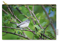 Carry-all Pouch featuring the photograph Blue-gray Gnatcatcher by Gary Hall