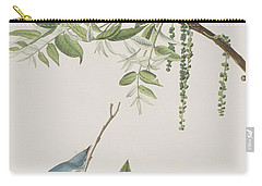 Blue Grey Flycatcher Carry-all Pouch