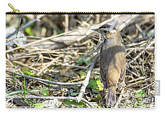 Bluethroat Carry-all Pouch by Pravine Chester
