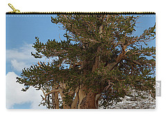 Bristlecone Pine 5 Carry-all Pouch