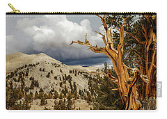 Bristlecone Pine Tree 7 Carry-all Pouch