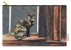Cat In A Window Carry-all Pouch