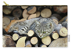 Carry-all Pouch featuring the photograph Cat Resting On A Heap Of Logs by Michal Boubin