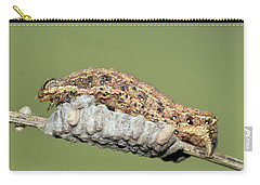 Caterpillar And Parasitic Wasp Eggs Carry-all Pouch