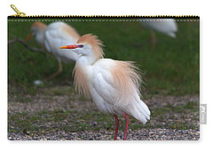 Cattle Egret Walking Close Carry-all Pouch