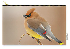 Cedar Waxing Carry-all Pouches