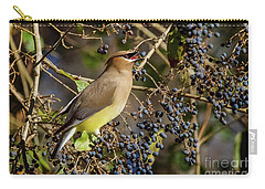 Cedar Waxwing Eating Berries Carry-all Pouch