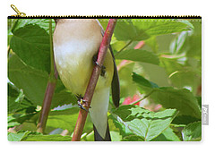 Carry-all Pouch featuring the photograph Cedar Waxwing by Sean Griffin