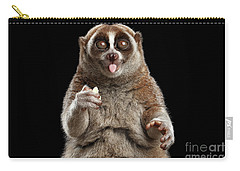 Close-up Lemur Slow Loris Isolated Black Background Carry-all Pouch