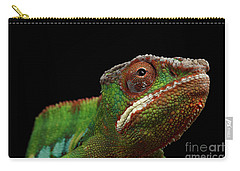 Closeup Head Of Panther Chameleon, Reptile In Profile View Isolated On Black Background Carry-all Pouch by Sergey Taran