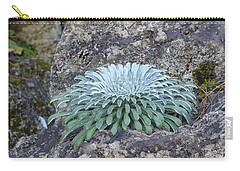 Exotic Plant Carry-all Pouch