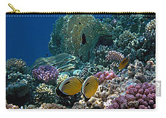 Exquisite Butterflyfish In The Red Sea Carry-all Pouch