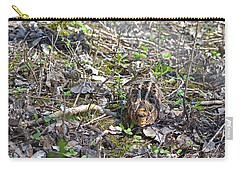 Eye-contact With The American Woodcock Carry-all Pouch by Asbed Iskedjian