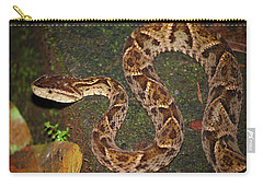 Fer-de-lance, Bothrops Asper Carry-all Pouch