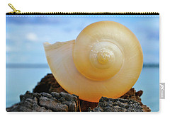 Carry-all Pouch featuring the photograph Fibonacci by Skip Hunt